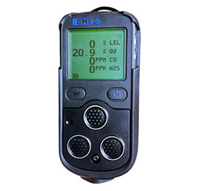 PS200 SERIES PORTABLE GAS DETECTOR